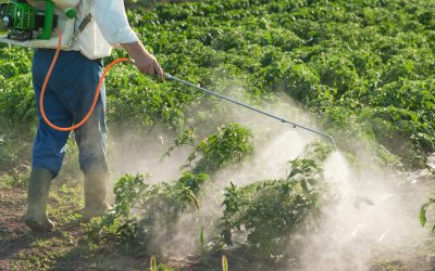 Australia's First Glyphosate Case